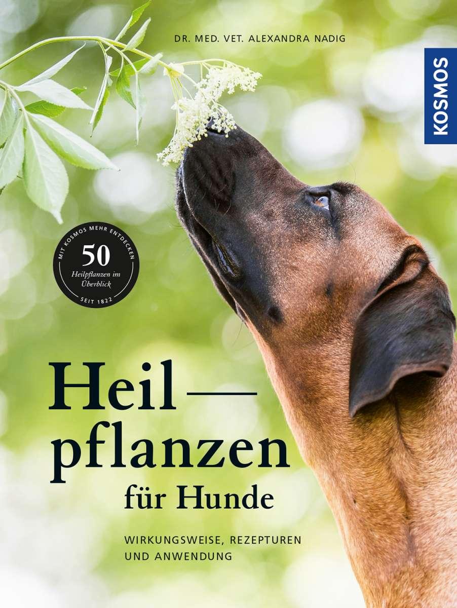 Heilpflanzen für Hunde. Wirkungsweise, Rezepturen und Anwendung