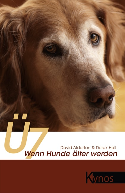 Ü7. Wenn Hunde älter werden