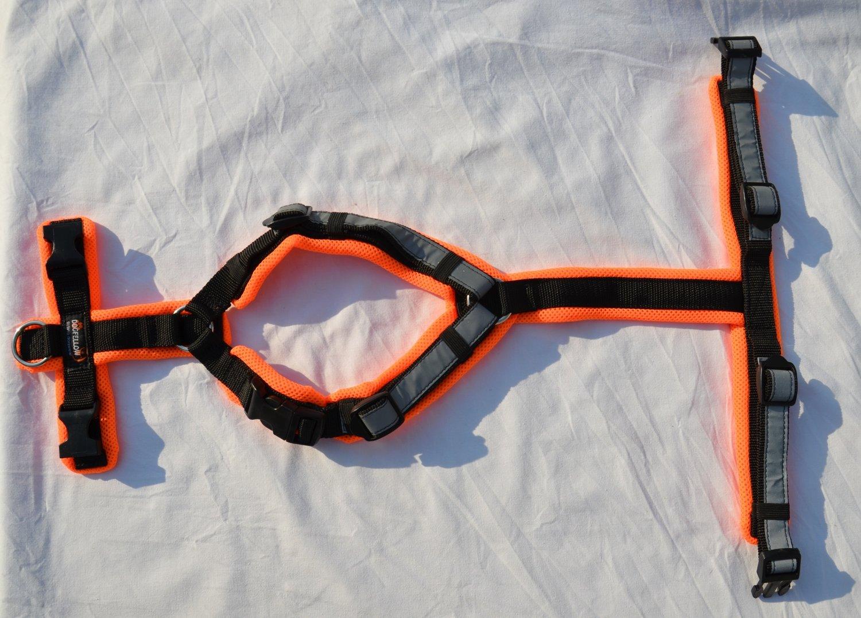 Dogfellow Secure Happy mit zusätzlichen Ringen im Brust- und vorderen Rückenbereich