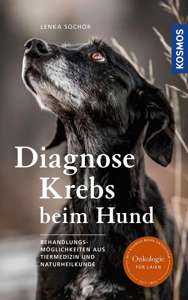 Diagnose Krebs beim Hund. Behandlungsmöglichkeiten aus Tiermedizin und Naturheilkunde